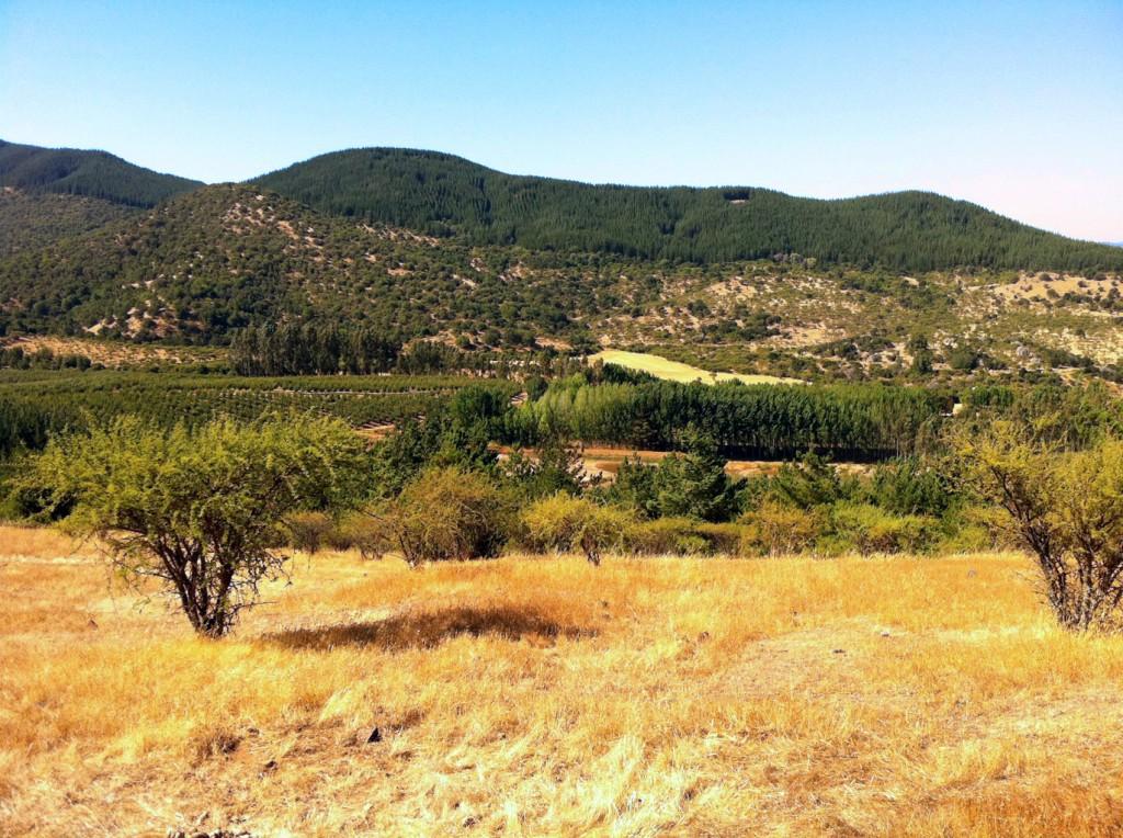 Rolling-Farm-Hills